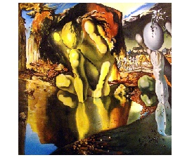 Dali from Metamorphosis